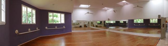 Salon de Danza, Biblioteca Los Mangos