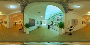 Museo Peter Gray, Puerto Vallarta